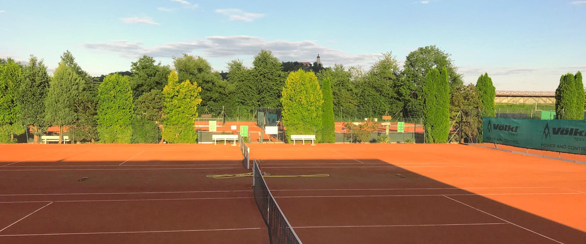 TSV 1883 Bogen - Tennis e.V.